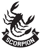 Scorpion Stock Images