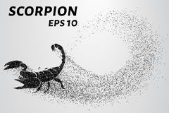 Scorpion of the particles. Scorpion consists of small circles. Vector illustration Stock Image