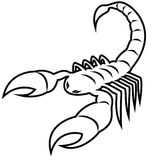 Scorpion - Scorpio Royalty Free Stock Image