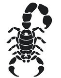 Scorpion tattoo. Scorpion black and white tattoo Royalty Free Stock Photography