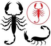 Scorpion. Vector illustration (EPS 10 Royalty Free Stock Photo