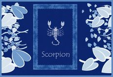 Scorpion zodiac sign Stock Photo