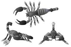 Scorpions Royalty Free Stock Photo