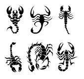 Scorpions collection Stock Photos