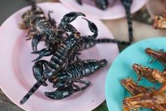 Scorpions et insectes d'eau rôtis comme casse-croûte Photographie stock