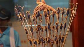 Scorpions frits sur le marché chinois Photo libre de droits