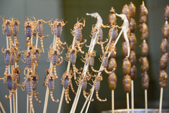 Scorpions and seahorses on sticks, Beijing, China Stock Photos