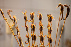 Scorpions skewers Royalty Free Stock Photography