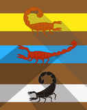 Scorpions Vector Stock Images