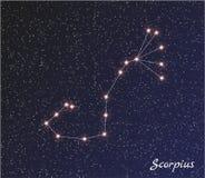 Scorpius de la constelación Fotografía de archivo libre de regalías