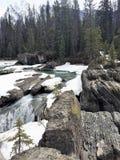 Scorra con le rocce e la cascata innevate - Rocky Mountains Fotografia Stock