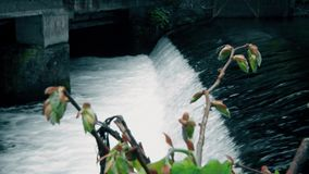 Scorra l'acqua vicino del ponte in città, fiori nella parte anteriore stock footage