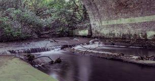 Scorra sotto la sposa in Virginia Water, Surrey, Regno Unito Fotografia Stock