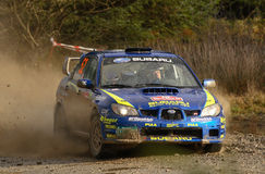 Scorrevole WRC di Travis Fotografie Stock