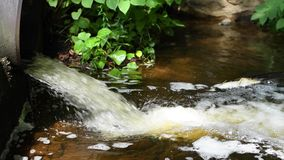 Scorrimenti dell'acqua sporchi da un tubo in fiume, inquinamento ambientale archivi video