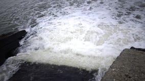 Scorrimenti dell'acqua sporchi dal tubo in uno stagno naturale Inquinamento ambientale stock footage