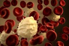 Scorrimento bianco dei globuli di cellula basofila illustrazione vettoriale