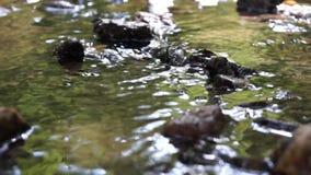 Scorrimento dell'acqua Fotografie Stock Libere da Diritti