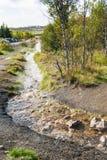 Scorrimento dell'acqua caldo in Haukadalur Spring Valley caldo Fotografia Stock