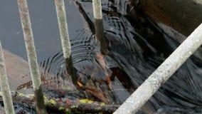 Scorrimento dell'acqua sulla piccola diga stock footage