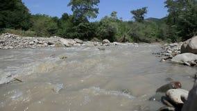 Scorrimento sporco del fiume della montagna stock footage