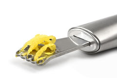 Scorza di limone Fotografia Stock