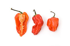 Scotch Bonnet chillis Stock Photos