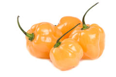 Scotch Bonnet Peppers Isolated on White Stock Photo