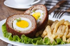 By scotch egg and fried potatoes close-up Royalty Free Stock Image