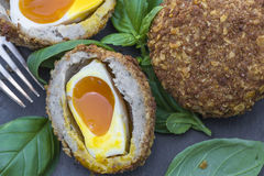 Scotch egg. Gourmet Scotch egg with running yolk Stock Image