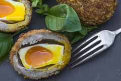 Scotch egg. Gourmet Scotch egg with running yolk Royalty Free Stock Photography