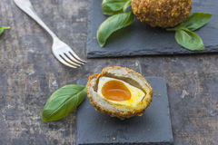 Scotch egg Stock Images