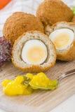 Scotch Egg Stock Images