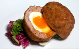 Scotch egg with a liquid yolk Royalty Free Stock Image