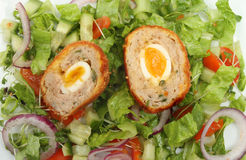 Scotch egg salad Stock Images