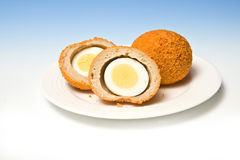 Scotch eggs. A plate of Scotch eggs, one whole and the other halved, on a blue and white gradient background Royalty Free Stock Photos