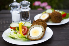 Scotch eggs. A plate of Scotch eggs and salad Royalty Free Stock Images