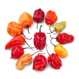 Scotch pepper group Stock Photo