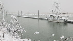 Scotch Pond Steveston Fresh Snow stock footage
