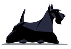 Scotch terrier minimalist image Royalty Free Stock Images