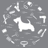 Scotch terrier silhouette, combs, collar, leash, razor, hair dry. Er, scissors arranged in a circle. Health care, grooming, caring for a dog, exhibition vector illustration