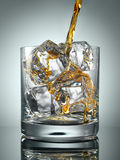 Scotch Whisky in Glass with perfect ice. Pouring Scotch Whisky in Glass with perfect ice stock photography