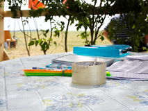 Scotch and writing materials on the table. On the table under a canopy of branches lie tape and stationery Royalty Free Stock Image