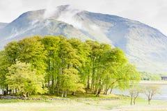 scotland Fotografering för Bildbyråer