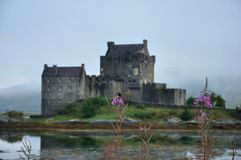 Scotland Eilean Donan castle 3. Flowers and Eilean Donan castle background Stock Photo