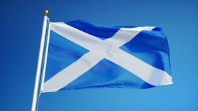 Scotland flag in slow motion seamlessly looped with alpha. Scotland flag waving in slow motion against clean blue sky, seamlessly looped, close up, isolated on stock video