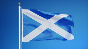 Scotland flag in slow motion seamlessly looped with alpha. Scotland flag waving in slow motion against clean blue sky, seamlessly looped, close up, isolated on stock video footage