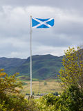Scotland flag waving in the wind. Cloudy sky stock photography