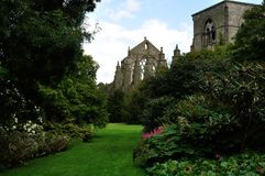 Scotland Holyrood Abbey 2. Edinburgh Holyrood Abbey ruins outside view Royalty Free Stock Photo