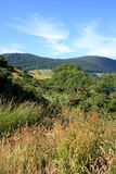 Scotland nature Royalty Free Stock Photo